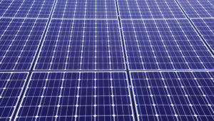 Solar panels stolen by thieves from two farms in Wales