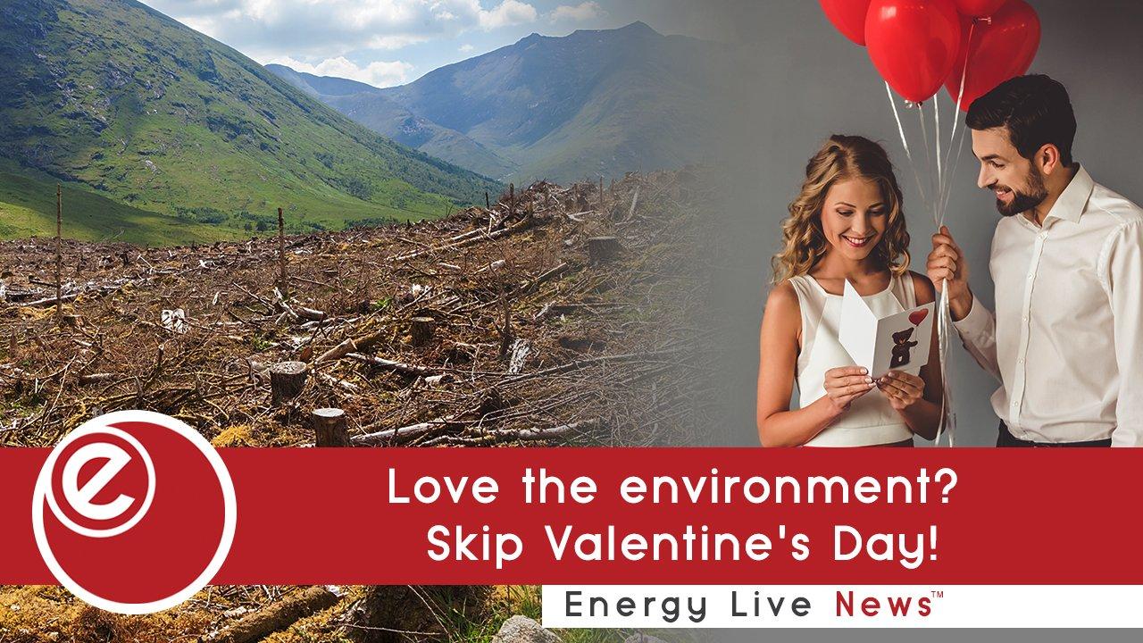 Love the environment? Skip Valentine's Day!