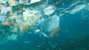 UN and EU adopt new roadmap to tackle marine pollution