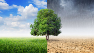 Government sets out updated climate strategy