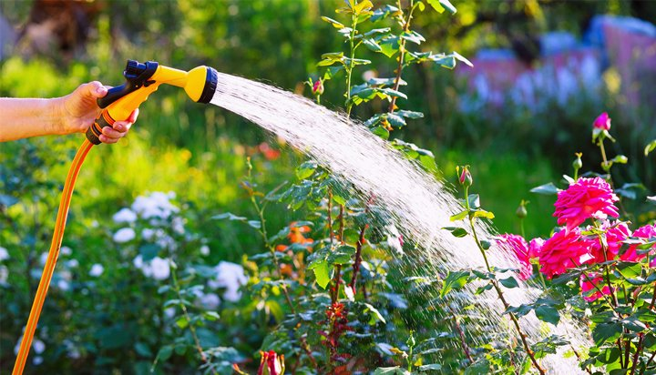 United Utilities calls off summer hosepipe ban in England