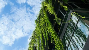 US invests $74m in energy efficient building technologies