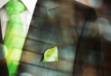 The Phenomena of the Sustainable Company: The Eco-Certifications Companies Need to Go Through