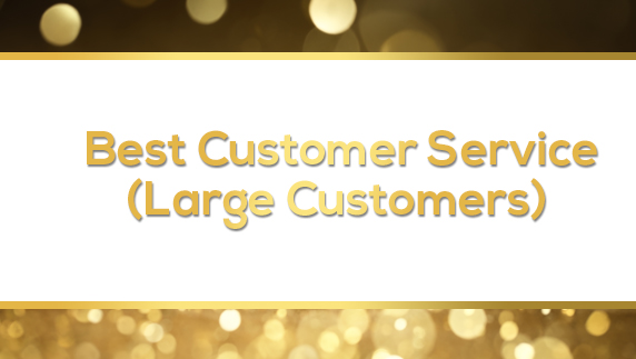 Best Customer Service (Large Customers)