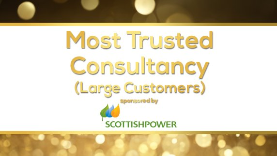 Most Trusted Consultancy (Large Customers)