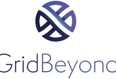 GridBeyond wins Frost & Sullivan's 2019 Technology Innovation Award for Excellence in European Demand Side Response
