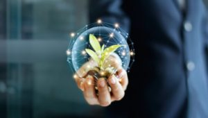 Businesses call for action on UK's sustainable goals