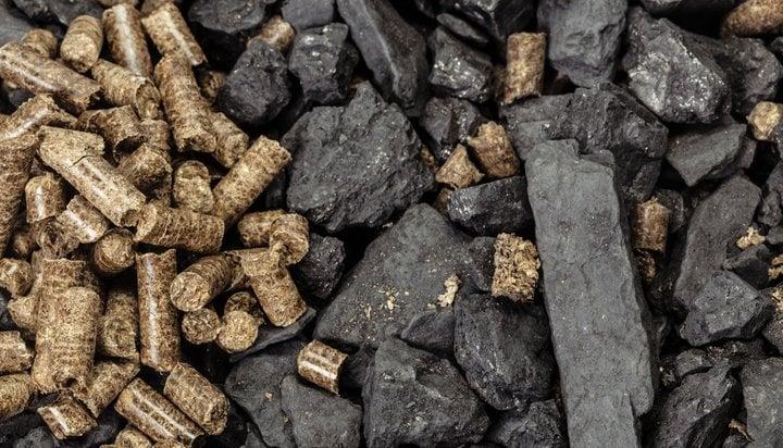Coal and biomass pellets