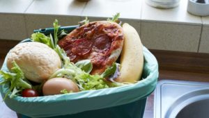 Wasting food 'is top cause of environmental guilt among Brits'