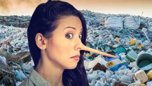 Six million people across UK lie about how much they recycle
