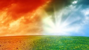 Government to table landmark Environmental Bill