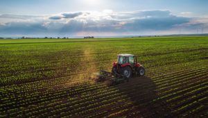 New law to reward farmers for protecting environment and tackling climate change