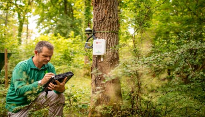 UK forests to transmit data to ring the alarm on climate change - Energy Live News - Energy Made Easy