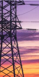 Industry responds to Net Zero Strategy