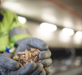 How biomass is helping us along the way to a zero-carbon future