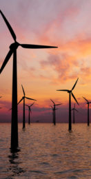 Total and Iberdrola join forces to bid for 1GW offshore wind farm in Danish North Sea