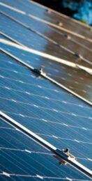 Future Energy Scenarios 2021: The four paths to net zero