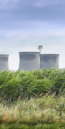 Drax joins forces with farmers to boost Britain's energy crop market