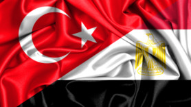 Turkey and Egypt 'need to tap bioenergy potential'