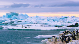 Snowfall in Antarctic rises – but is it as good as it sounds?