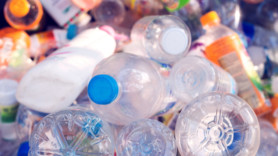 New enzyme nibbles on nasty plastic waste