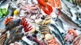 Aldi swims to the top of sustainable supermarket seafood