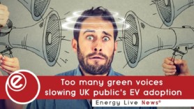 'Too many green voices slowing UK public's EV adoption'