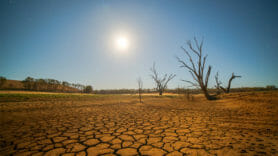 Drought increases CO2 concentration in the atmosphere, say researchers