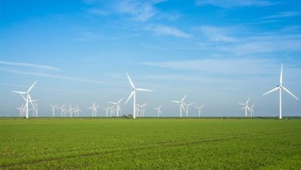 German onshore wind 'collapse' jeopardises EU renewable energy goals