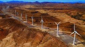 Africa's largest wind farm enters full operation in Kenya
