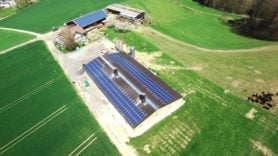 SOLARWATT kits out poultry farm with egg-citing new solar roof