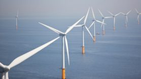 Record low price for offshore wind in clean energy auction