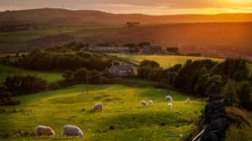 UK's natural capital 'is worth almost £1 trillion'